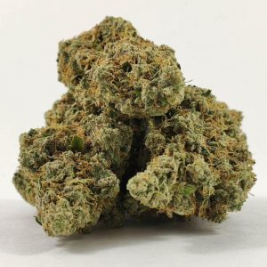 Girl Scout Cookies -Exclusive Shelf 28G FOR $260 SPECIAL